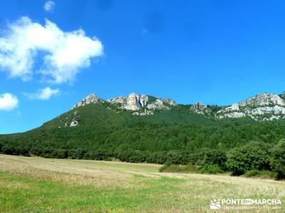 Hayedos Rioja Alavesa- Sierra Cantabria- Toloño;viajes enero viajes en febrero marcas de montaña
